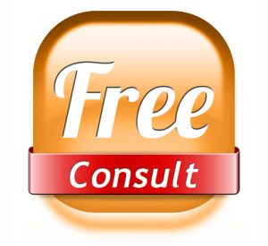 Virtual Assistant in Paradise Free Consult